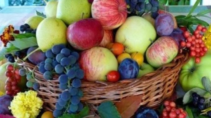 The Moldovan fruit farmers' paradox produce and sell 2019
